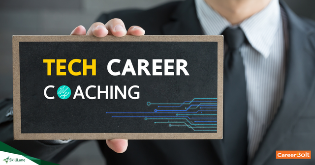 Tech Career Coaching - Building the Tech Career Paths in 2017